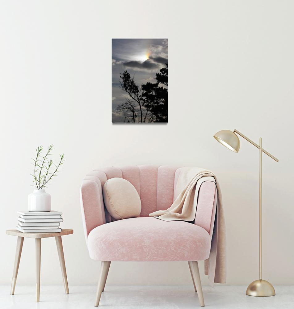 """Hidden Rainbow""  by danreedphotography"
