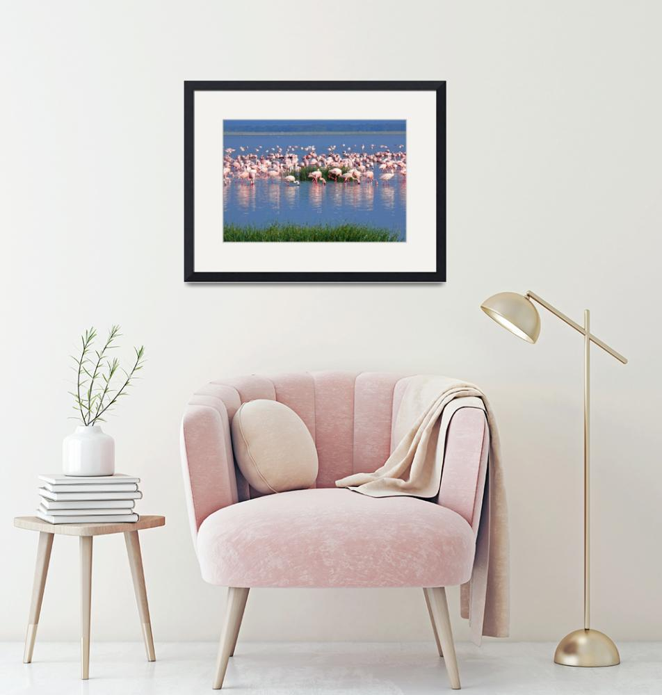 """Lake Nakuru Flamingos""  (2007) by stockphotos"
