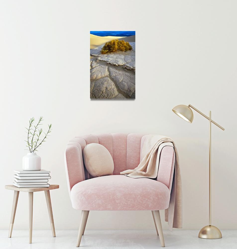"""Death Valley Mudflat""  (2000) by Inge-Johnsson"