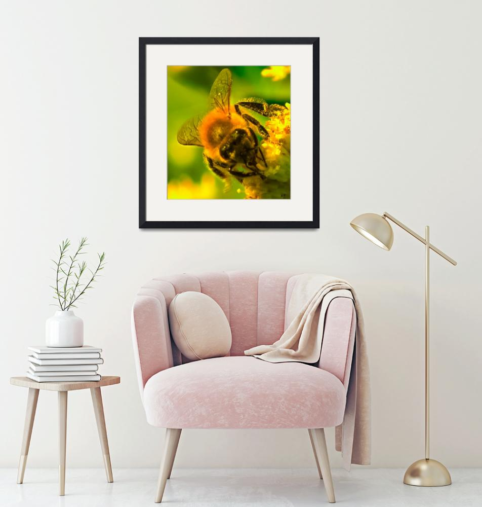"""""""Bees Knees""""  by mjacedesigns"""