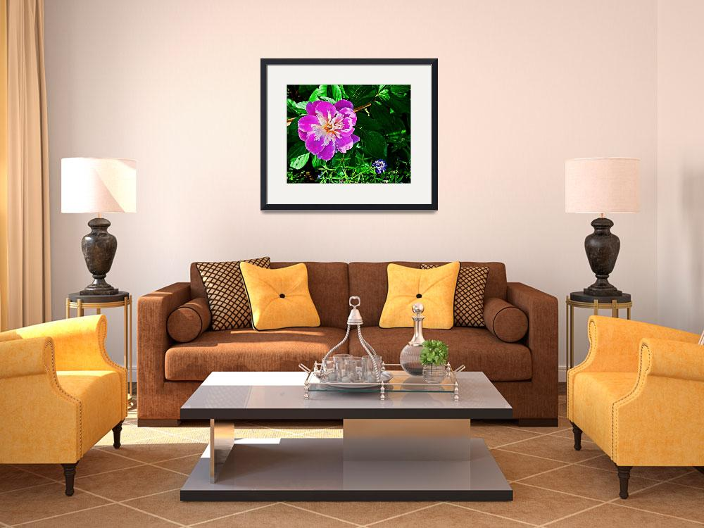 """""""peony1&quot  (2009) by GEMSPhotography"""