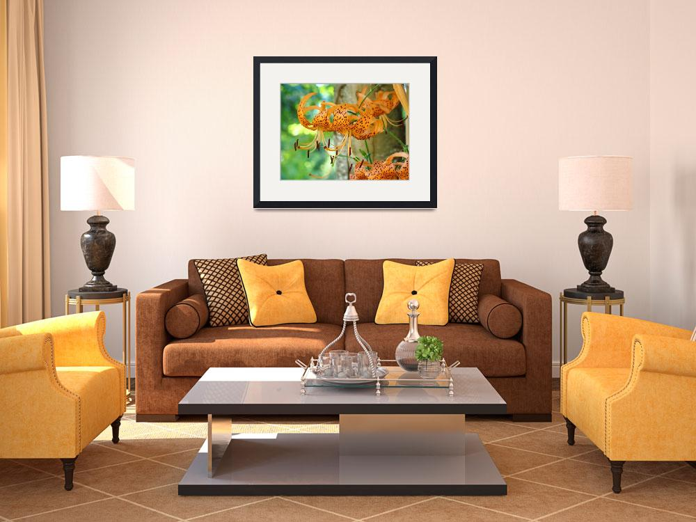 """Floral Canvas prints Orange Tiger Lily Flowers&quot  (2011) by BasleeTroutman"