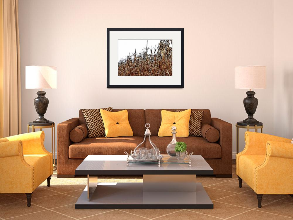 """""""Abstract of a Cornfield&quot  by bloomingvinedesign"""