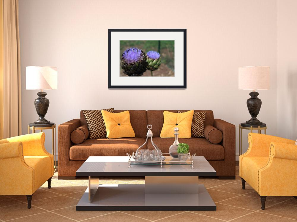 """""""Artichoke Blooming&quot  (2013) by lbphotos"""