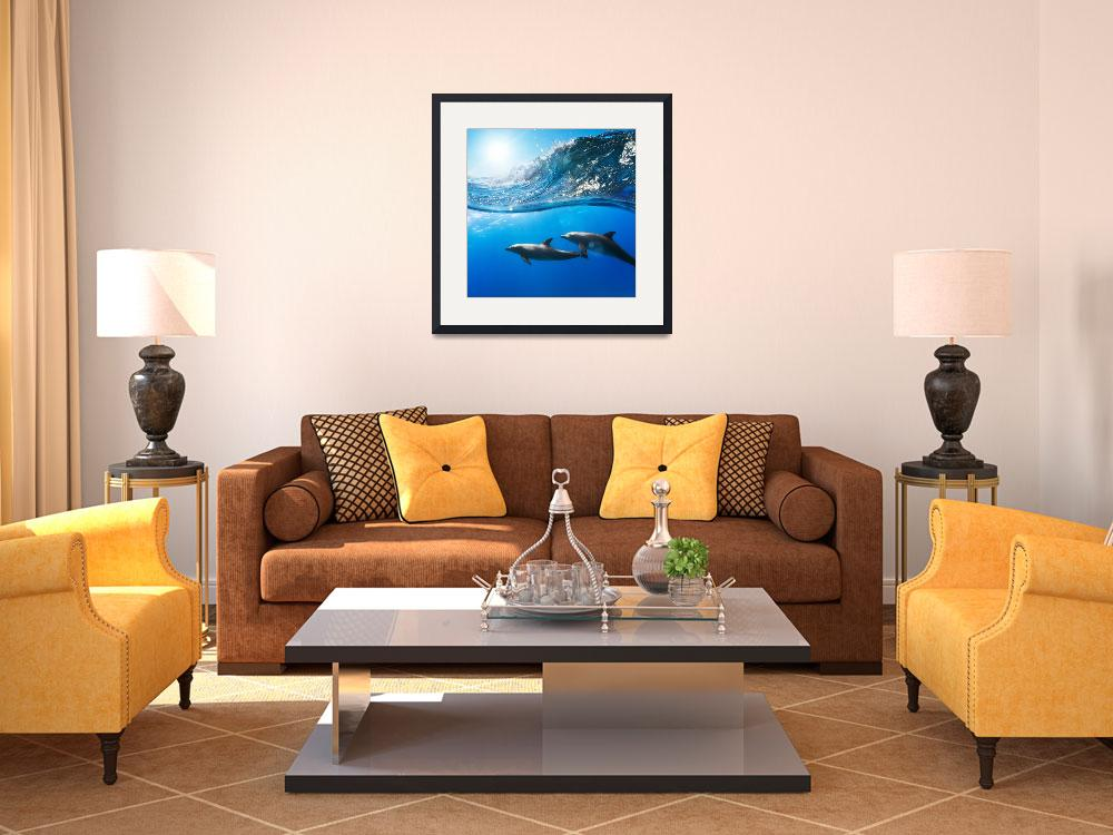 """Dolphin Photo Framed Print""  by buddakats1"