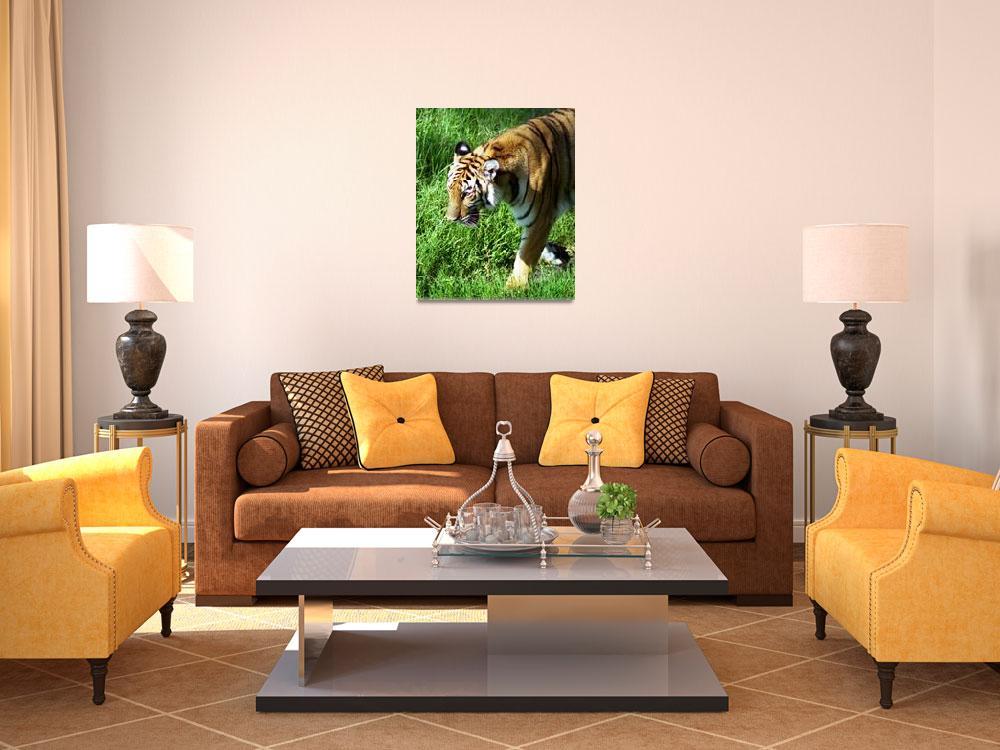 """Bengal Tiger-03&quot  (1994) by AppleCoreStudio"