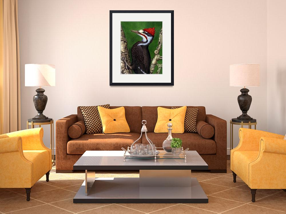 """""""PILEATED&quot  by bohanart"""