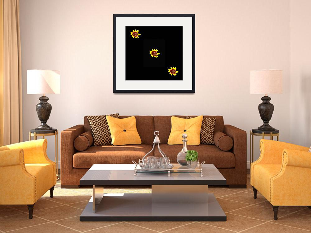"""""""Dramatic 3 Denver Daisy flowers on Black&quot  (2018) by NormaStampSunnyDaze"""