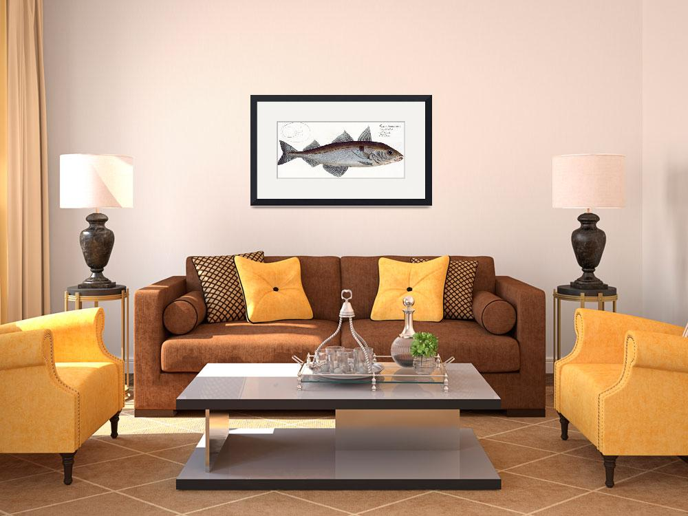 """""""Salmon (Salmo Salar)&quot  by fineartmasters"""