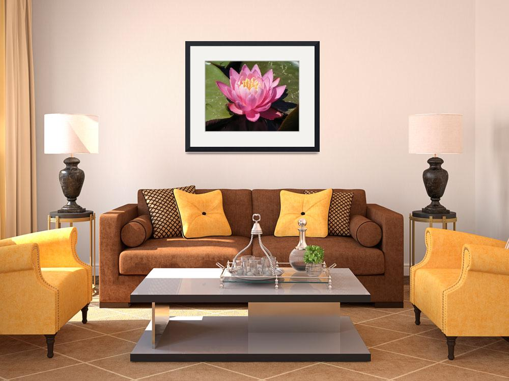 """""""Botanical - Water Lily - Outdoors Floral&quot  by artsandi"""