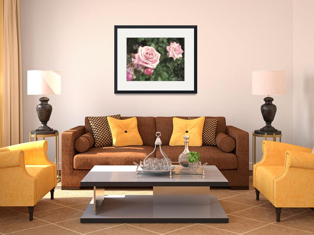 """""""Pink Roses in Anzures 1 Vintage""""  (2011) by ChristopherInMexico"""