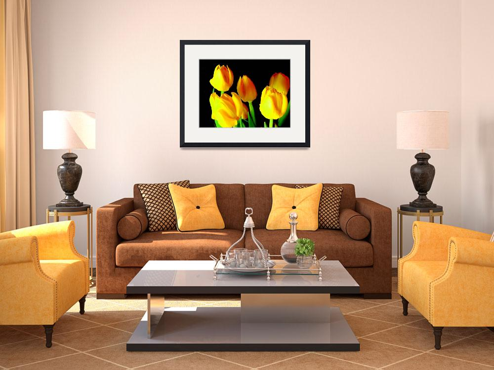 """""""Yellow Tulips&quot  by maj"""