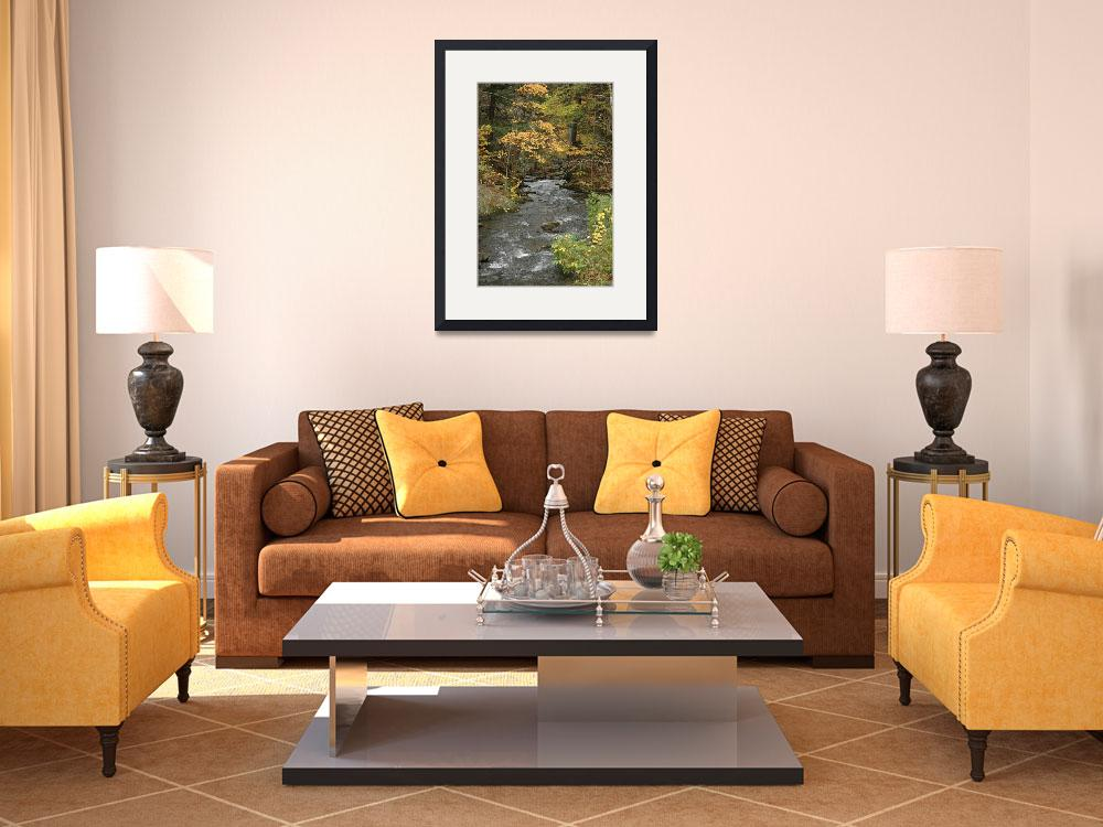 """""""Pretty river in the fall by Shannon Dimmitt&quot  by imagesdyw"""