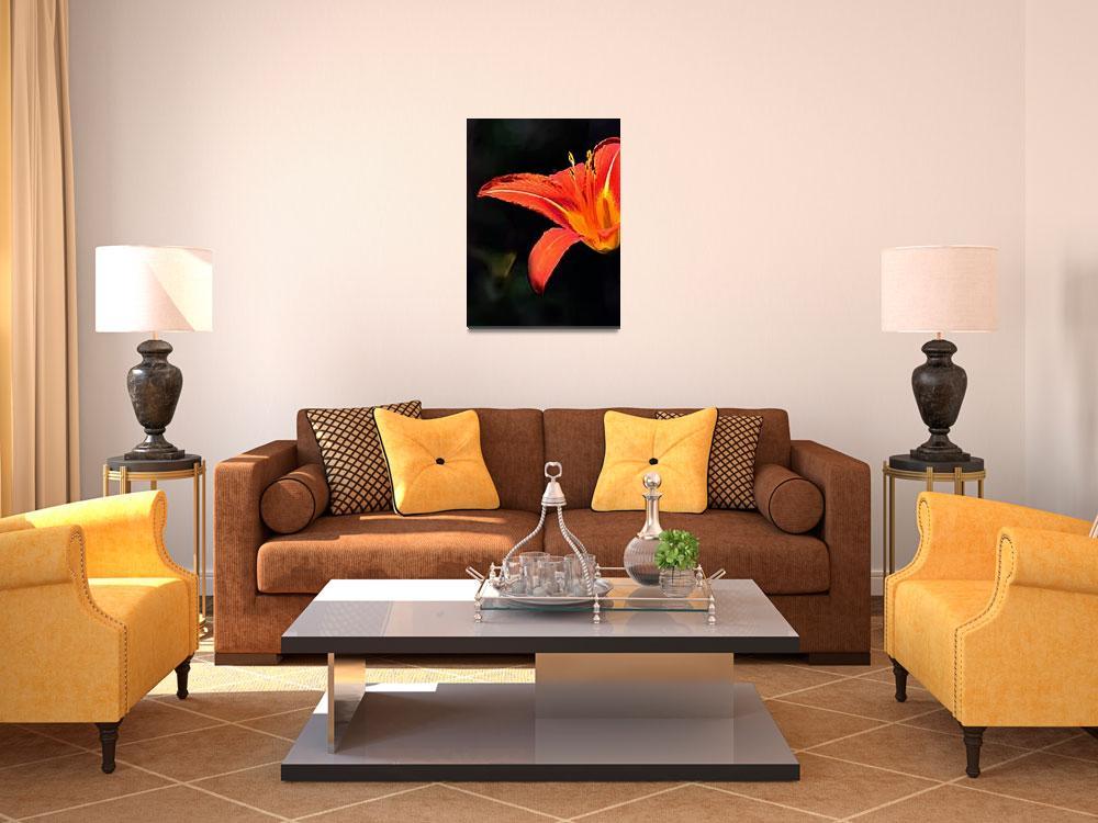"""Artistic Elegant Orange Daylily Flower&quot  (2013) by MissDawn"