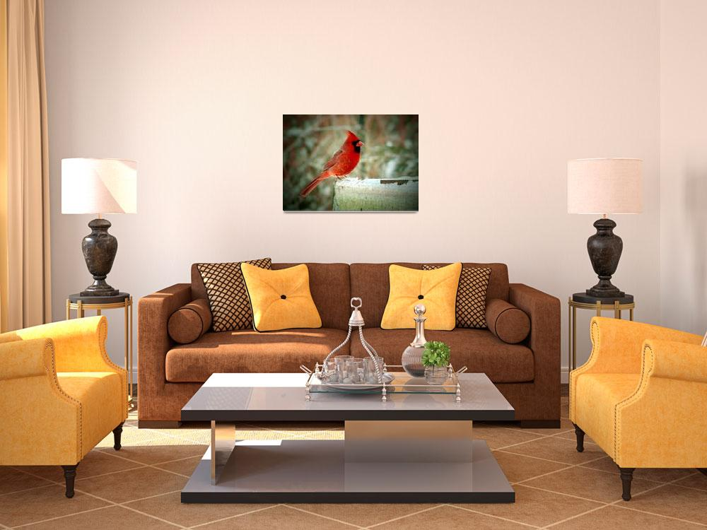 """""""Winter Cardinal - Oil Painting Effect""""  (2009) by 1blessedmom"""
