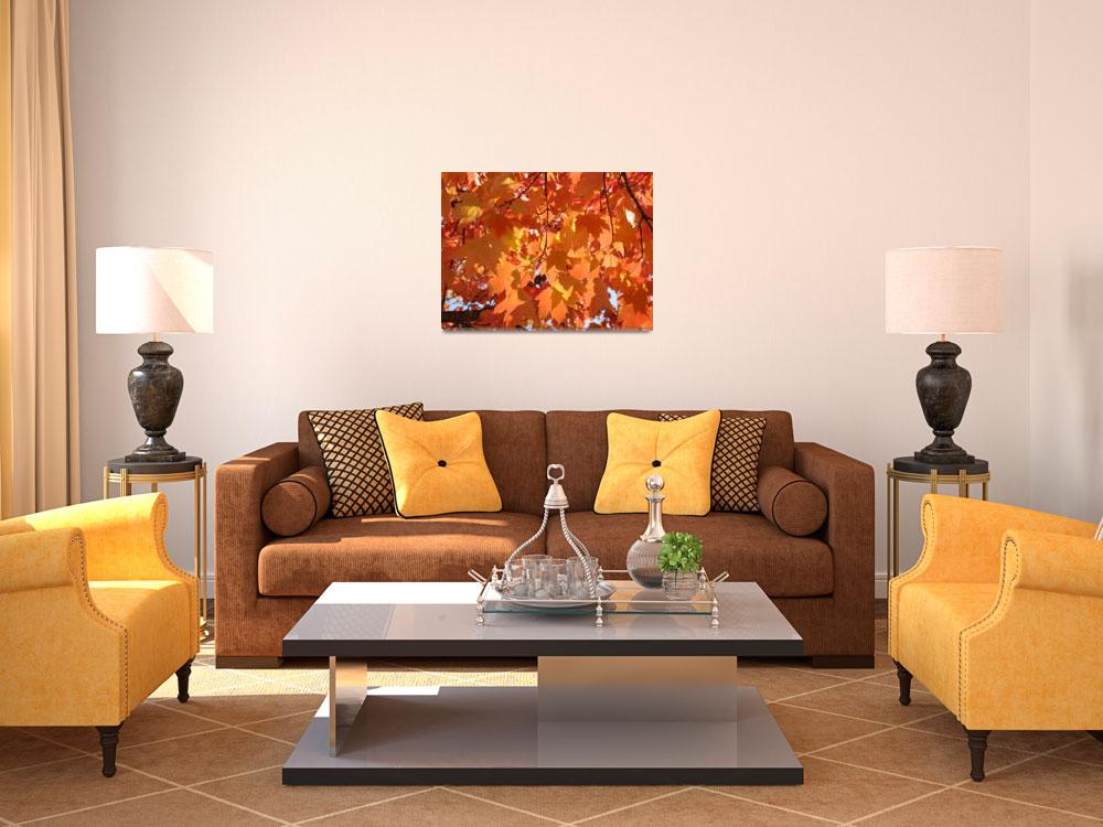 """Fall art prints Orange Autumn Tree Leaves Baslee""  (2010) by BasleeTroutman"