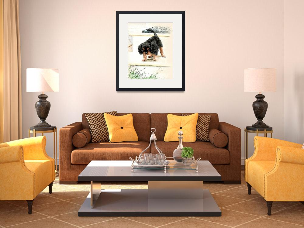 """""""Cavalier King Charles Spaniel&quot  (2009) by lindacarroll"""