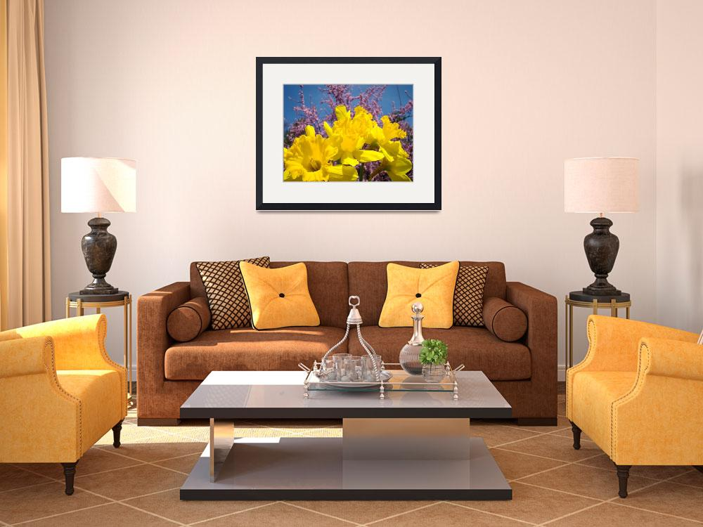 """""""Daffodil Nature Spring Art Prints Pink Blossoms&quot  (2010) by BasleeTroutman"""