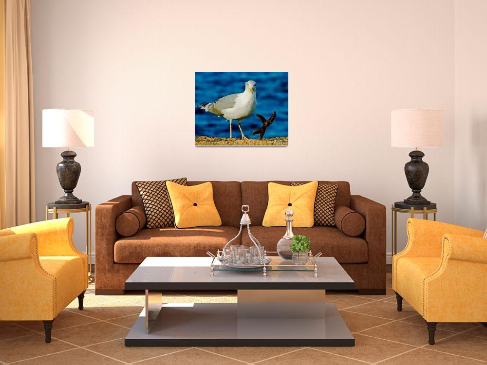 """""""Dance with the Seagulls&quot  (2012) by PhotographsByCarolFAustin"""
