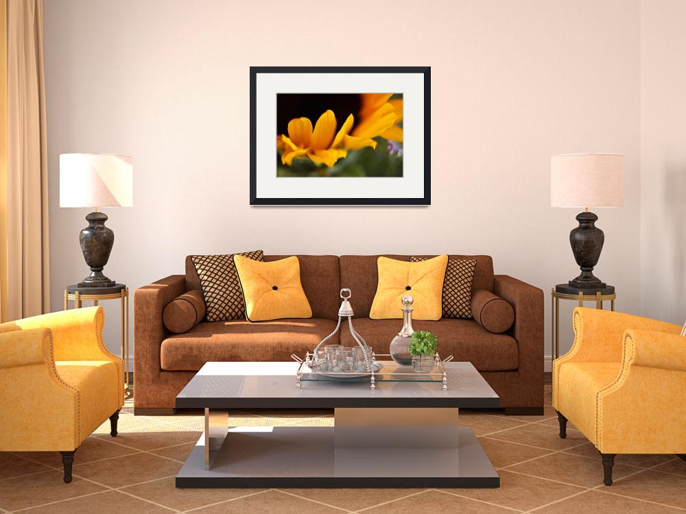 """""""Sunflower III&quot  (2008) by Annabel"""