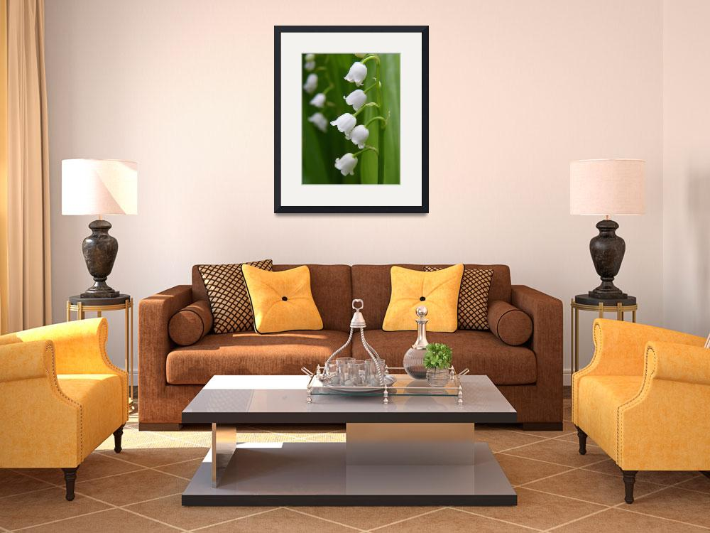 """""""Lily Of The Valley Convallaria majalis&quot  (2013) by vpicks"""