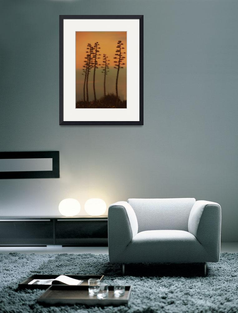 """""""Joshua Tree&quot  (2012) by CrepeMyrtles"""