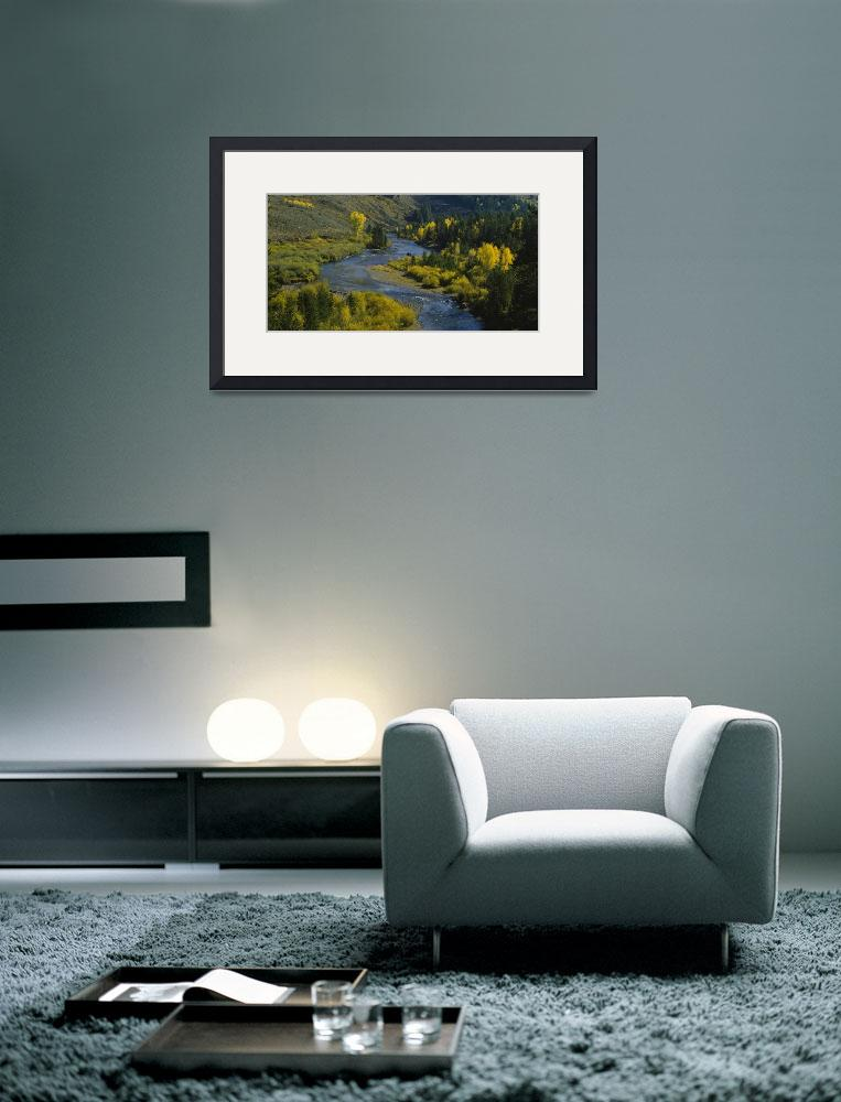 """""""High angle view of a river in the forest&quot  by Panoramic_Images"""