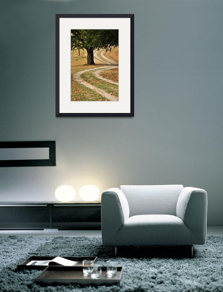 """""""Tree on the side of the country road in autumn&quot  by emilt"""