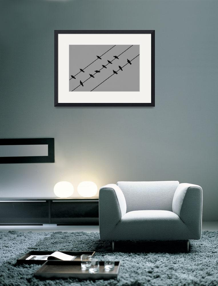 """""""Birds on Wire&quot  (2009) by barbee"""
