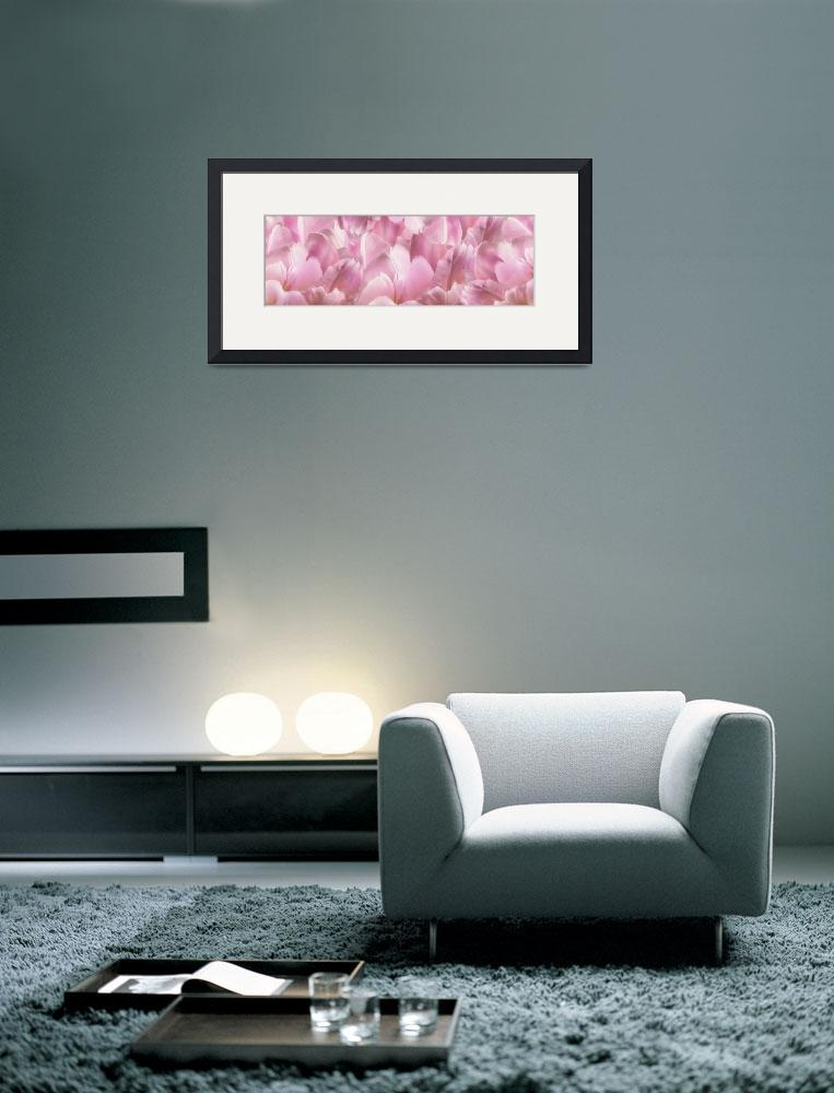 """""""Pink TulipScape&quot  (2013) by CoraNiele"""