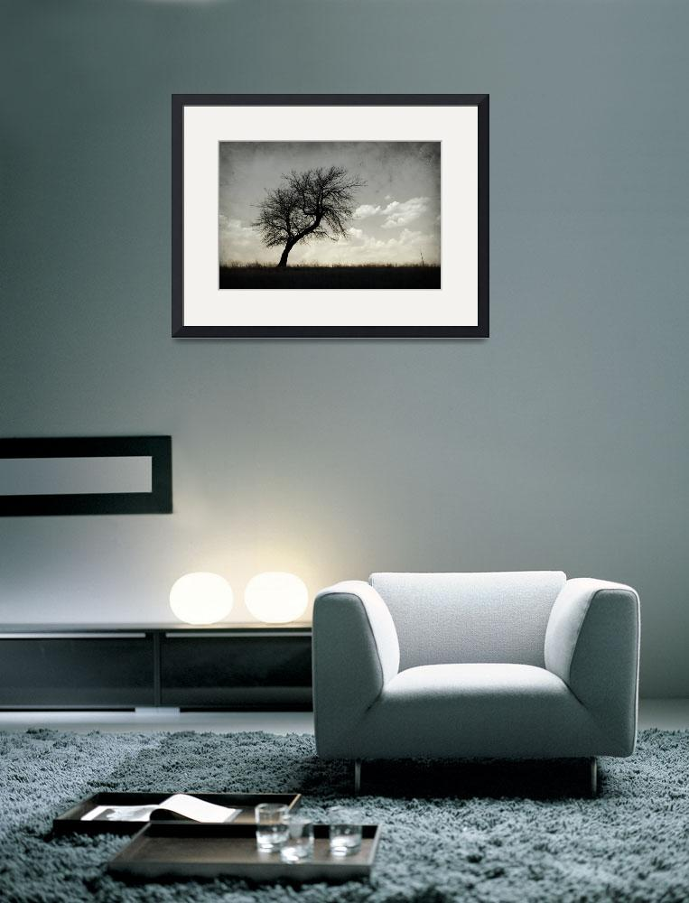 """""""Lone Tree Silhouette&quot  (2012) by miir"""