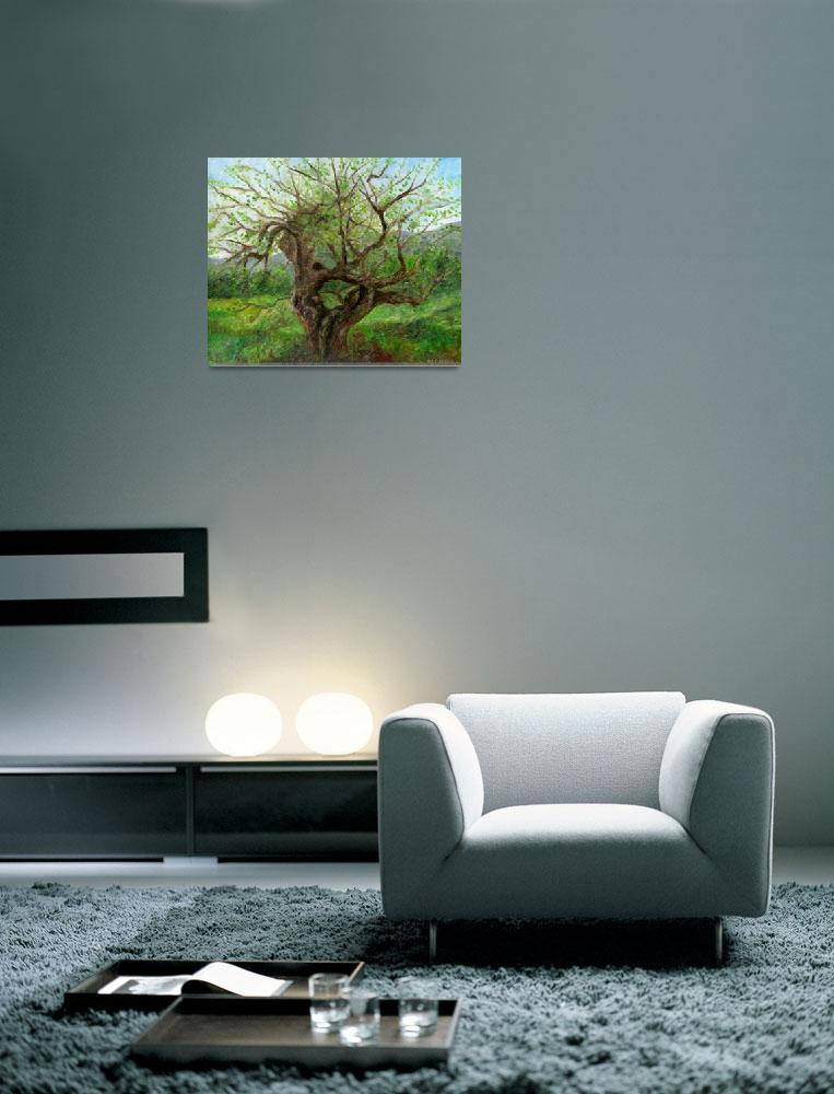 """""""Old Apple Tree&quot  (2004) by FTMcKinstry"""