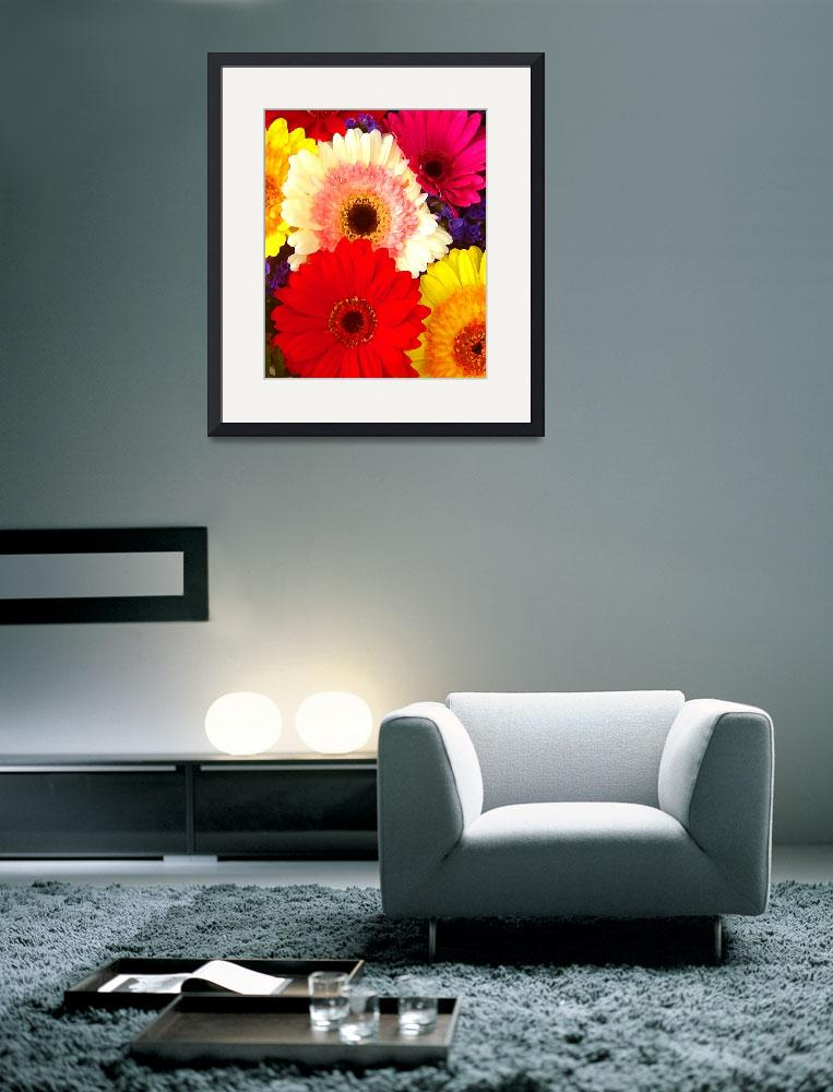 """""""Colorful Gerber Daisies&quot  (2009) by AmyVangsgard"""
