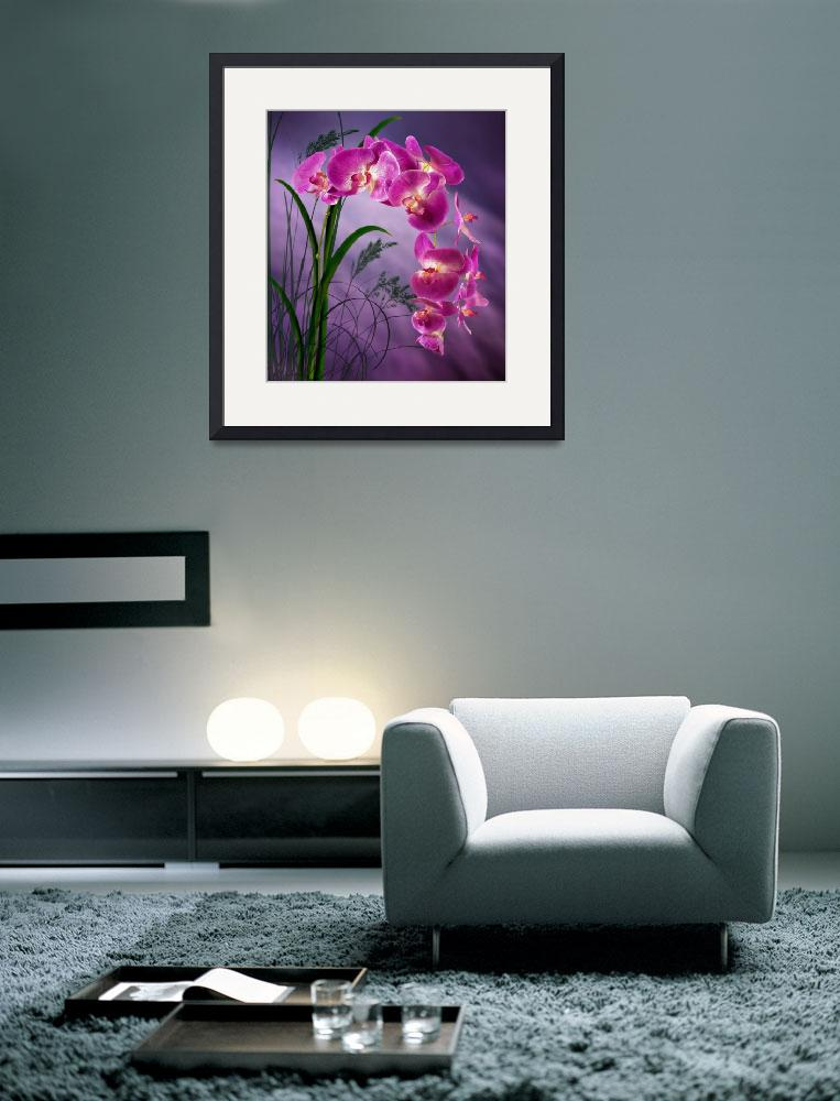 """Purple Orchid&quot  (2014) by Ninas4otos"