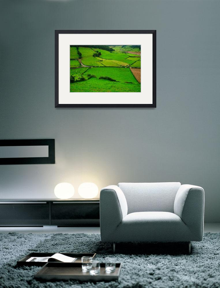 """""""Pastures in the Azores&quot  (2007) by gavila"""