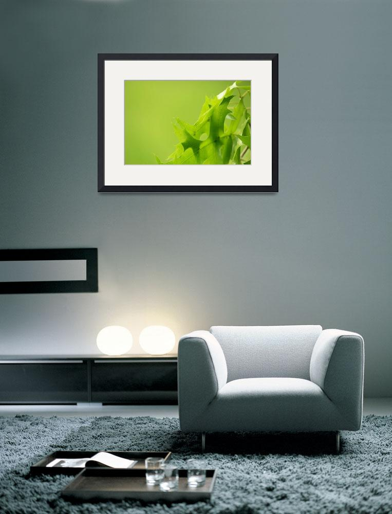 """Green Dream&quot  (2011) by bestsellers"