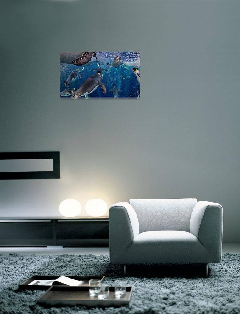 """""""Emperor Penguins Under Water""""  (2013) by netbrands"""