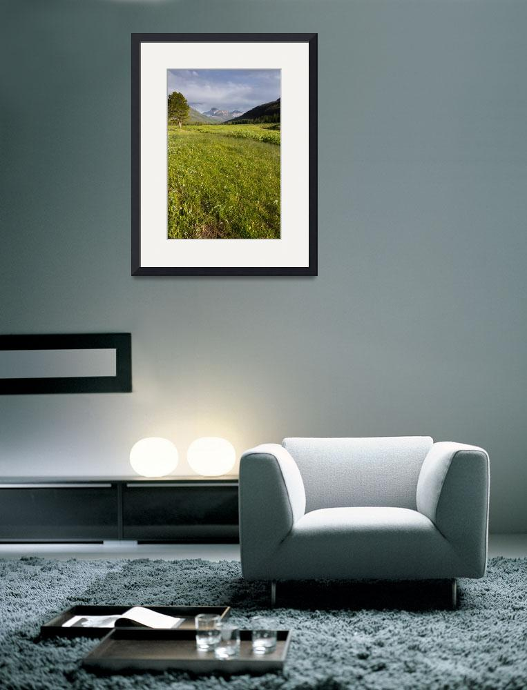 """""""Meadow in the Mountains""""  (2013) by Landscapes"""