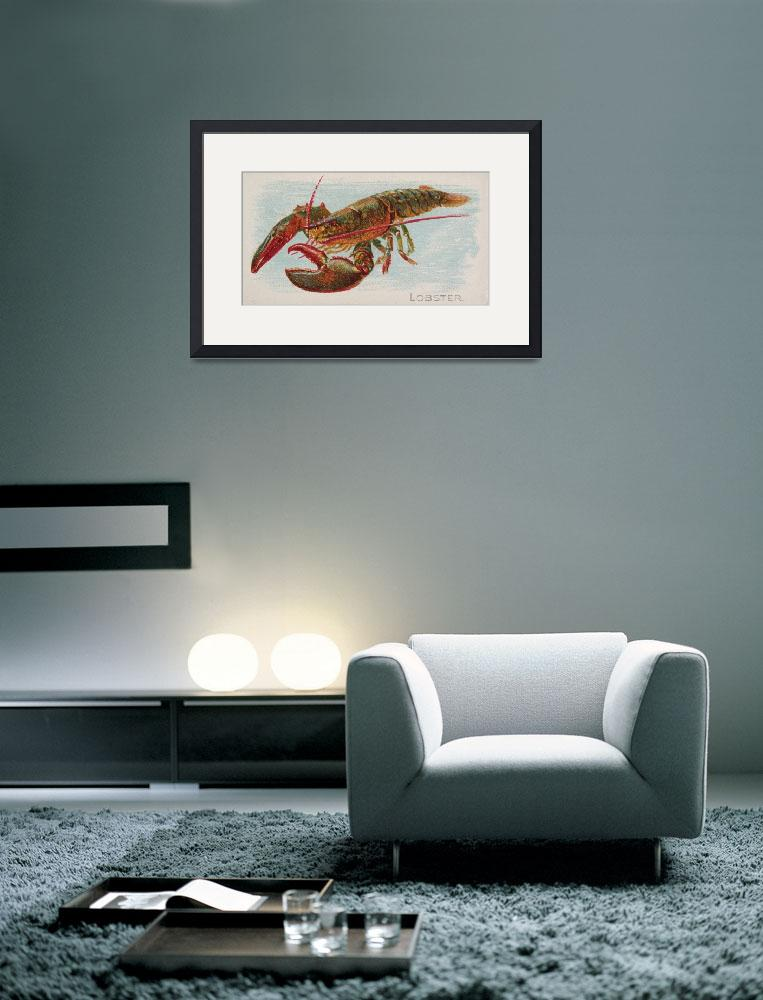 """""""Vintage Illustration of a Lobster (1889)""""  by Alleycatshirts"""