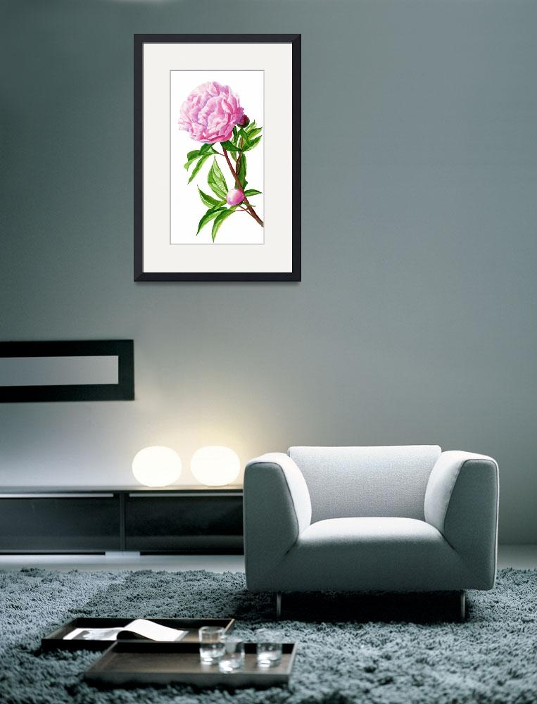 """""""Pink Peony with Leaves and Buds&quot  (2013) by Pacific-NW-Watercolors"""