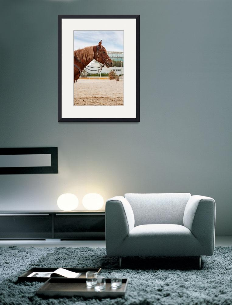 """""""Portrait of a horse at the beach&quot  by luigimorbidelli"""