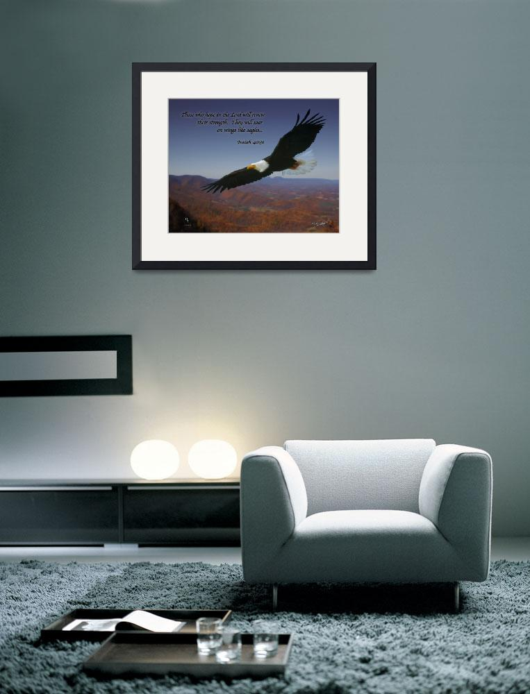 """""""Eagles Wings&quot  (2012) by DSGImages"""