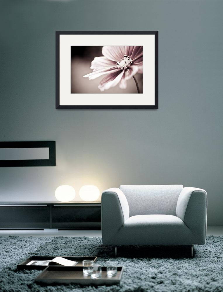 """""""Flower Expression&quot  (2011) by becreative"""
