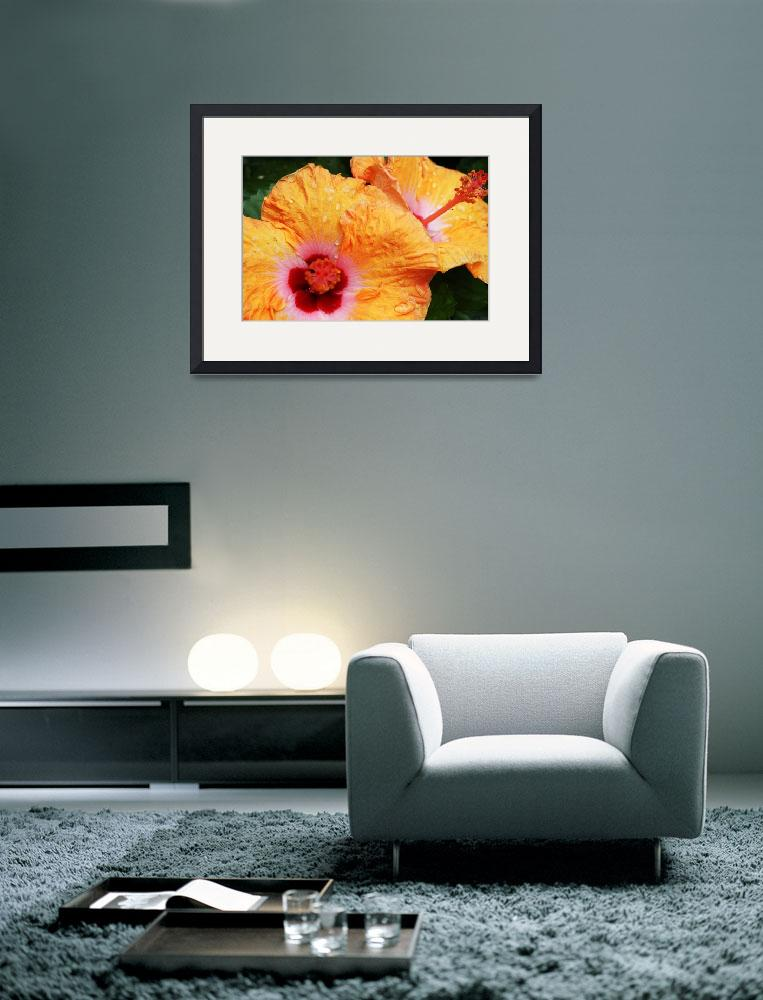 """""""Chicago Hibiscus #3&quot  by CLWalker"""