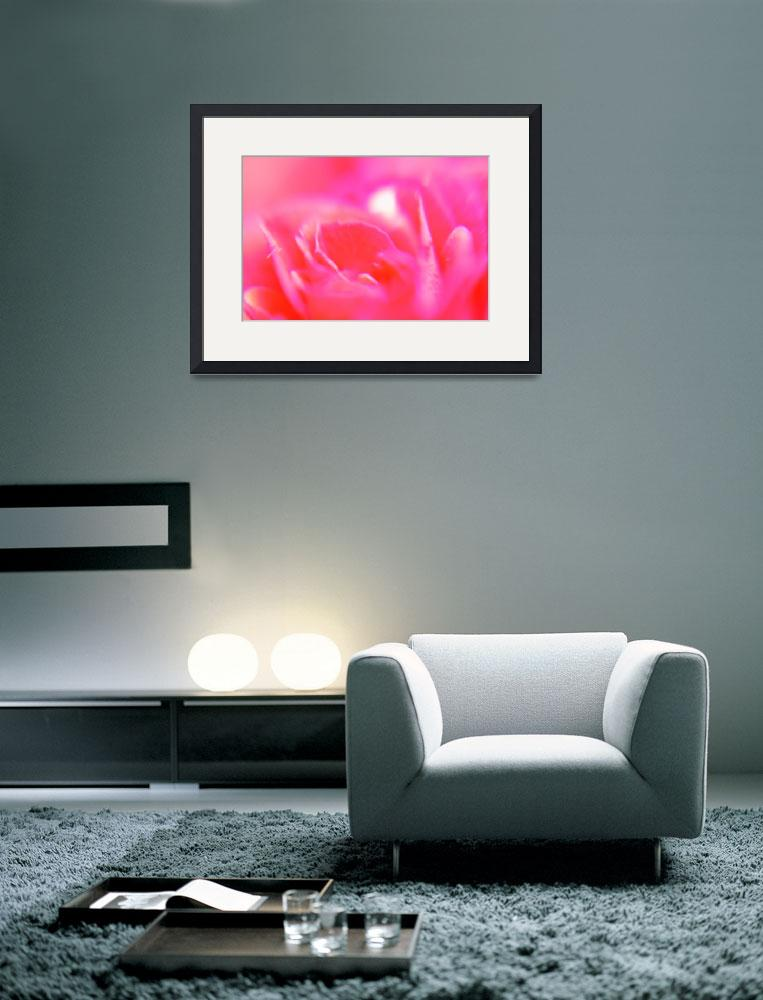 """""""Rose abstract""""  (2010) by derausdo"""