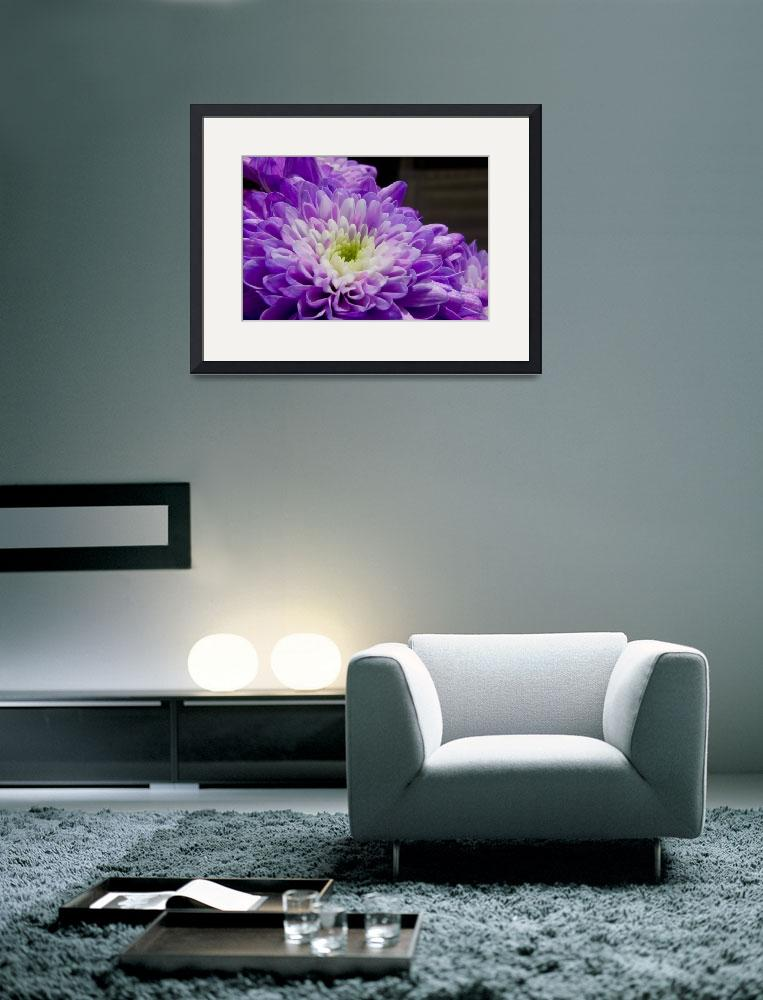 """Purple Flower&quot  (2008) by Simongrenfell"