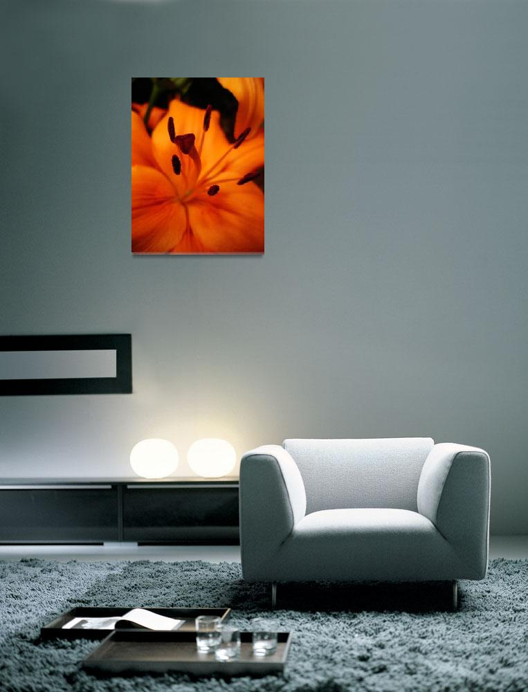 """""""lily&quot  (2007) by evanievan"""
