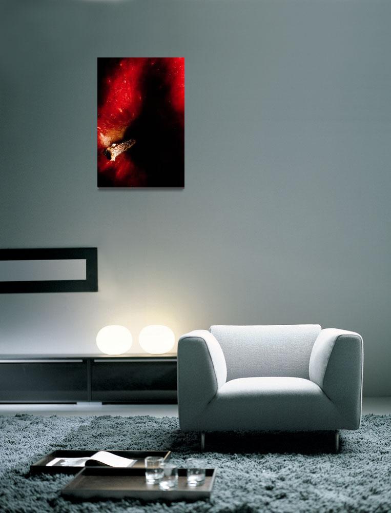 """""""FIERY                 : Red Apple""""  (2006) by SanjayNayar"""