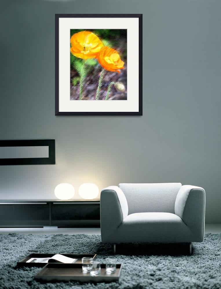 """""""Orange Poppies&quot  (2008) by heyalicia"""