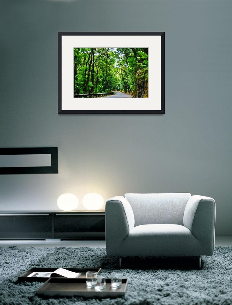 """""""Rainforest Drive""""  by WrightFineArt"""